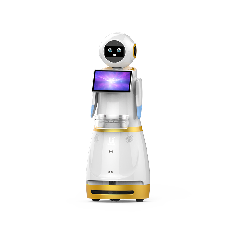Anyoumi Commercial Service Robot I